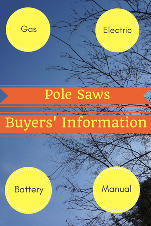 Pole Saw Buyers' Guide – Everything you need to know