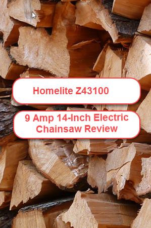 Homelite ZR43100 9.0 Amp 14-in Electric Chain Saw Review
